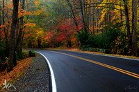 Autumn Highway